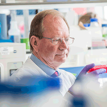 Professor Sir Stephen T Holgate CBE, FMedSci